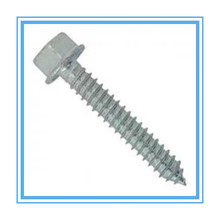 DIN6928 Hex Washer Head Self Tapping Screw with HDG